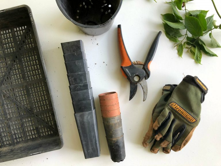 Tools used by gardeners in Cheshire