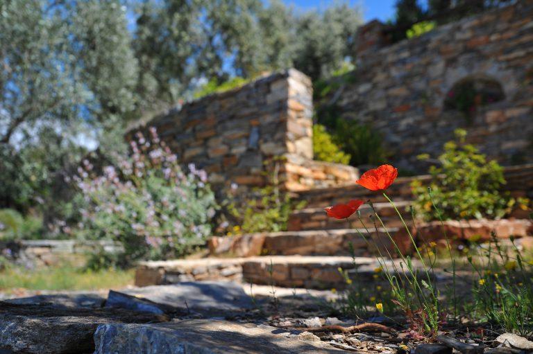 Evergreen Landscape Gardening